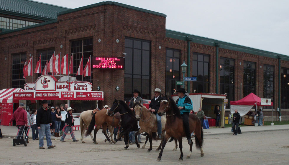 lots of horse activity at the state fair