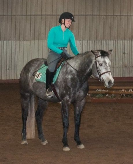 Lease this Beautiful Gray Mare!