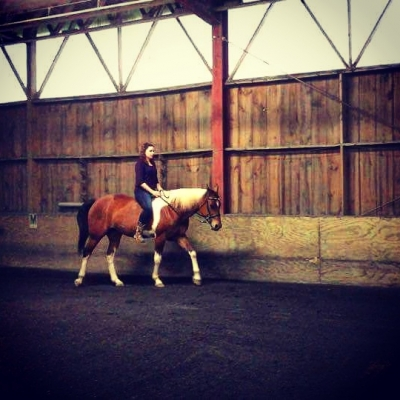 Sweet Paint Mare Avail. for On-Farm Lease