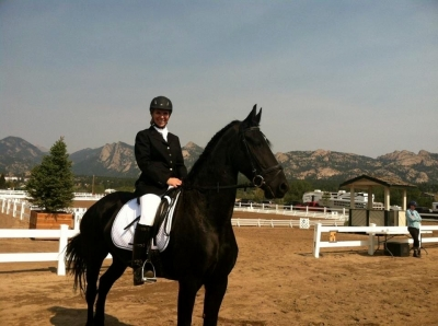 9 year old Friesian mare for lease