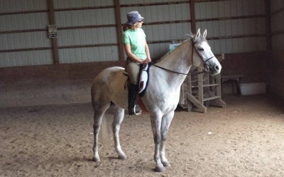 Horse for Lease / Shareboarding