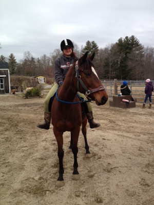 Hunter jumper On farm lease